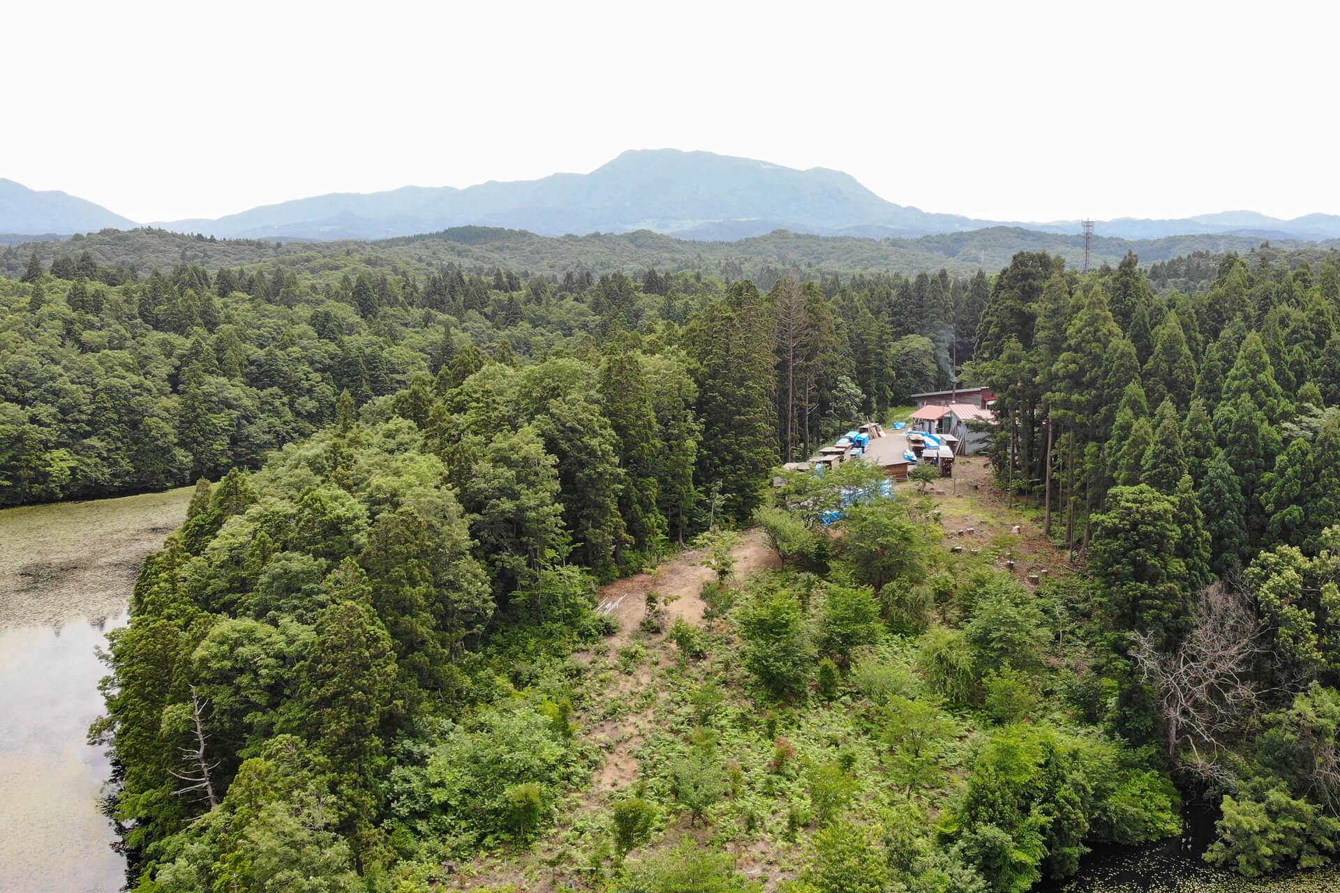 「木の家」を建てる前に知ってほしい 木のコト。森のコト。 すべては、私たちの未来と環境のために。